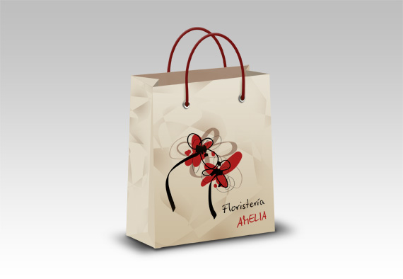 paqueteria packaging bolsa compra